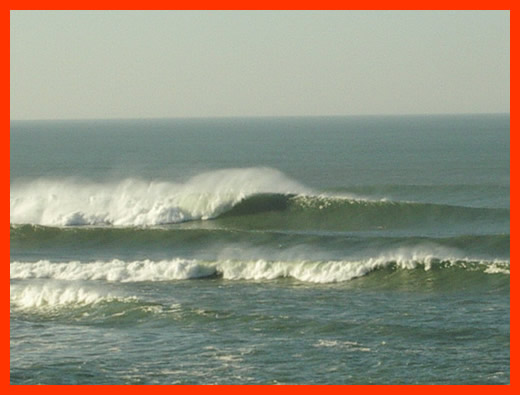 With a chomping swell hitting Hossegor, you want all your bones working.
