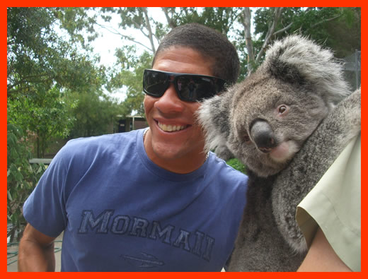 This could be the World's Biggest Koala.