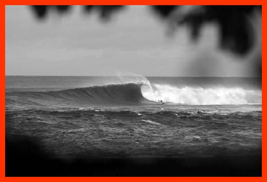 bede-blog-pre-hawaii-pic03